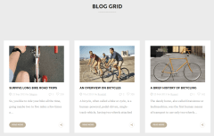 Velo Blog Page