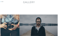 Viano Gallery Page