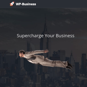 WP-Business Theme