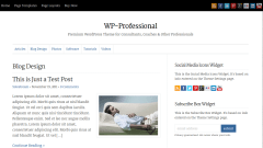 WP-Professional Blog Page