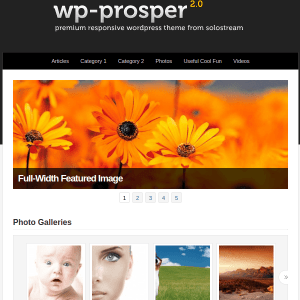 WP-Prosper Professional WordPress Theme