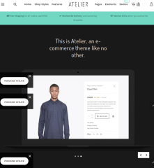 WordPress-theme-Atlier-features