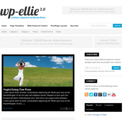 Wp-Ellie-WordPress-theme-Product
