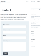 contact page of candid theme