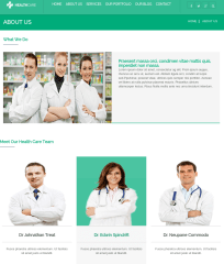 healthcare-WordPress