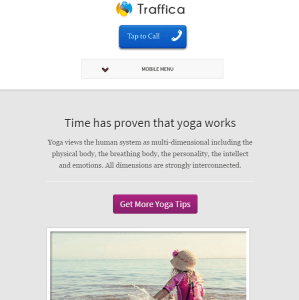traffica- A yoga style WordPress theme