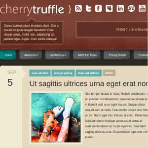 CherryTruffle WordPress Theme