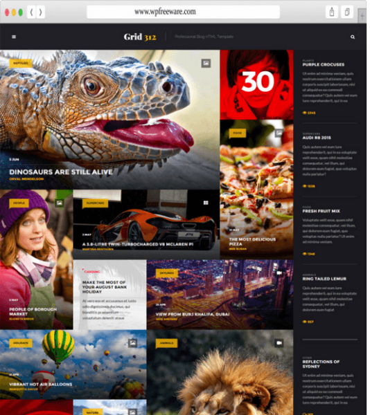 Grid 312 – Professional blog WP theme