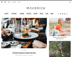 Home Page of Maverick
