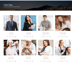 Rays – team page