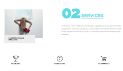 Services Page of Oscar