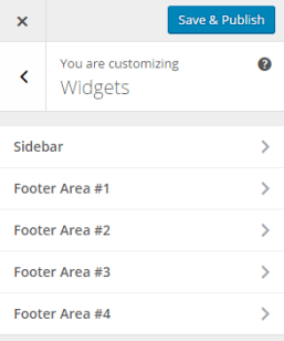 Theme Customizer _ Widgets