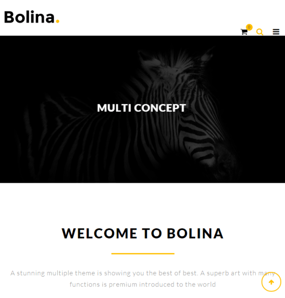 Bolina – Responsive and  Creative Multipurpose WP theme