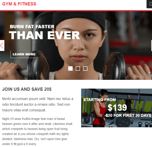 Gym & Fitness – WP Theme for Gym and Health related sites.