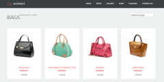 shop-page-of-everest