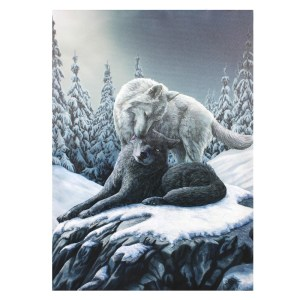 50x70cm Snow Kisses Canvas Plaque by Lisa Parker