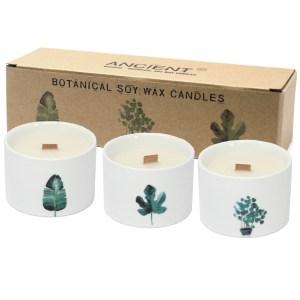 Med Botanical Candles - Lemon Honeysuckle