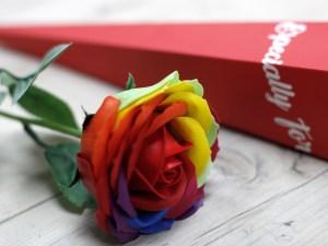 Luxury Soap Flower - Rainbow