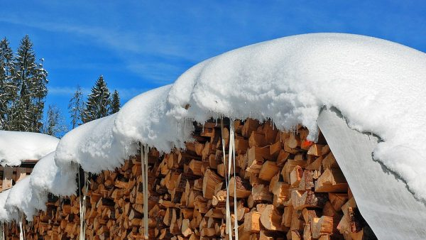 Logs covered over winter