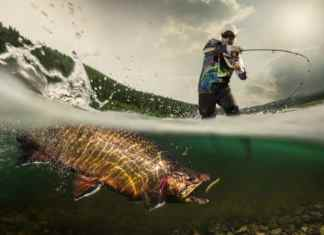 How to Hook a Fish When It Bites