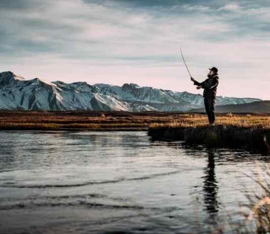 The Ultimate Guide On How To Fish For Trout