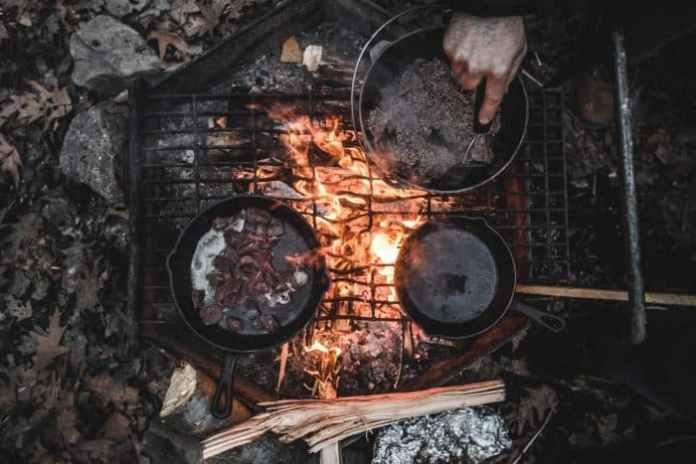Firewood Best to Worst