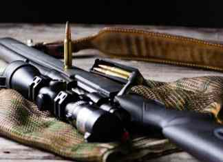 Best Scopes for .308