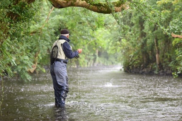 Trout Fishing In Cold Rain