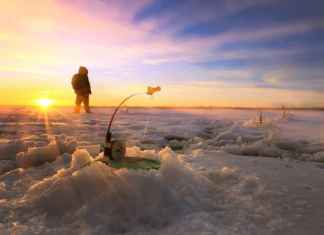 What Is an Ice Fishing Tip Up