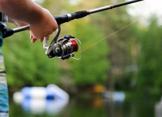 How to Clean and Maintain a Fishing Reel