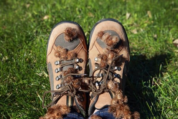 How to Remove Burrs in the Field