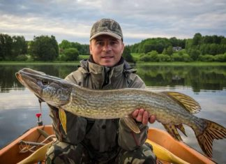 Pike Fishing Tips