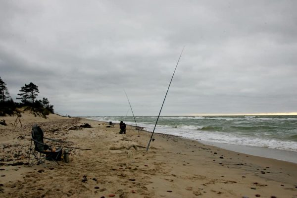 Best Weather For Surf Fishing