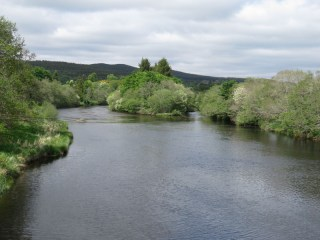 IMG_4481 River Spey