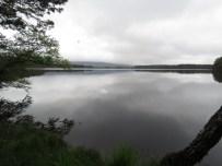 IMG_4585 Loch Garten