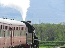 IMG_4693 train