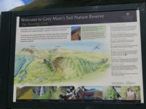 IMG_7683 old mare's tail sign