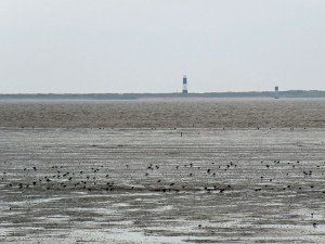 img_0941-lighthouse