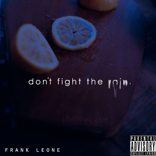 Frank Leone Don't Fight The Rain