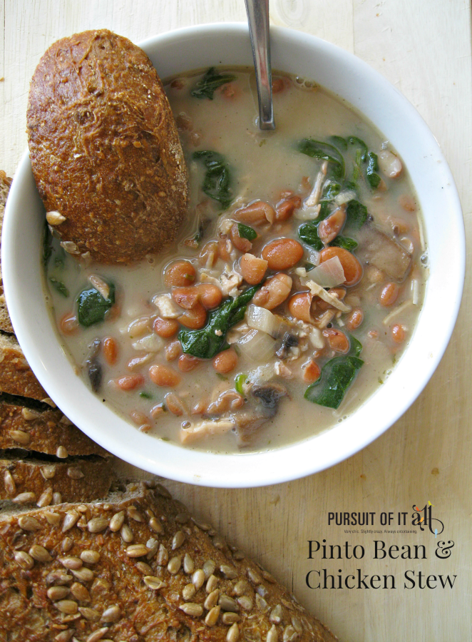 Pinto Bean & Chicken Stew: a perfect hearty meal that'll warm you to the bone!