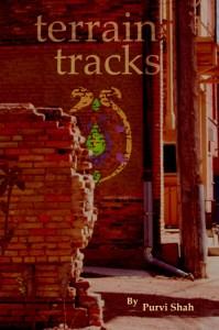 Terrain Tracks