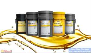 Distributor Oli Shell Morlina 150