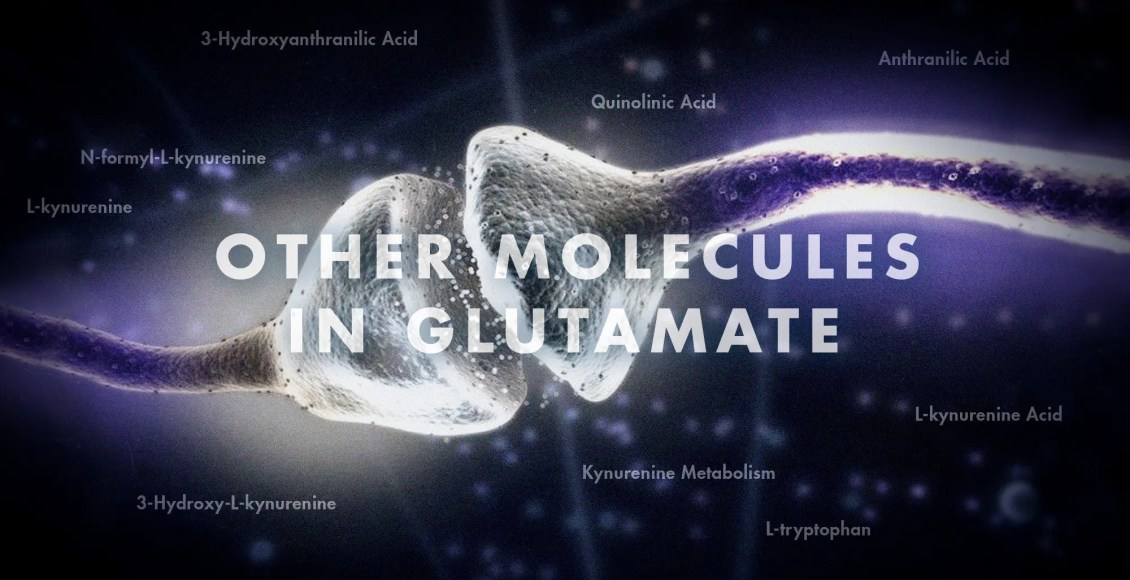 Functional Neurology: Other Molecules in Glutamate | El Paso, TX Chiropractor