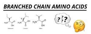 Wat zijn BCAA'S? De belangrijkste aminozuren?