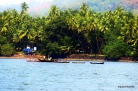 Dabhol backwaters 1