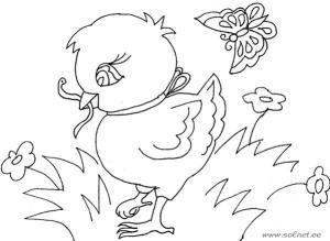 схема цыпленок с червяком