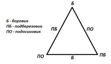 Урок 30 Сложение трехзначных чисел 12