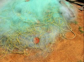 Fishing Nets at Sankarpur