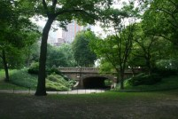 The Winterdale Arch - Central Park