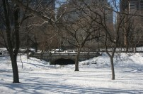 Snow covered Central Park